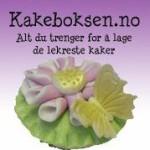 Bruk koden Hannes-Kaker så får du 5% på hele kjøpet på Kakeboksen